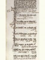 Sermones dominicales, f. 101v. Latin és magyar glosszák az evangélium sorai között